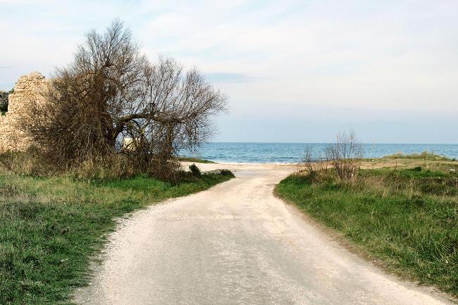 Paesaggio di Nicola Montinari.
