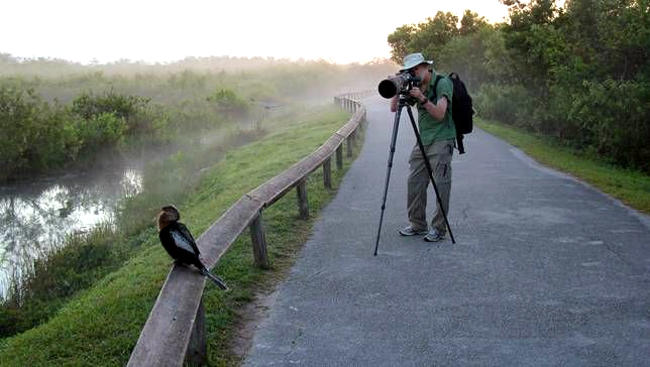 Fotografia naturalistica con zoom e treppiede.