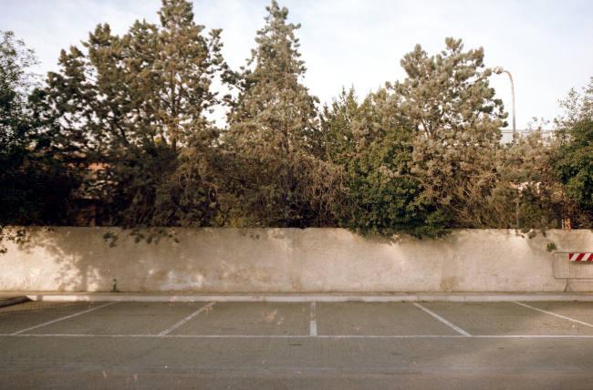 Foto analogica di muro con alberi, parcheggio.